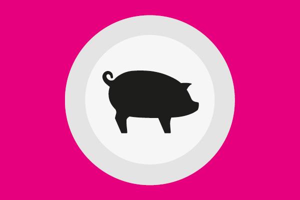 softproviding_prozess-schwein